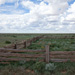Post and rail fence, Mungo woolshed